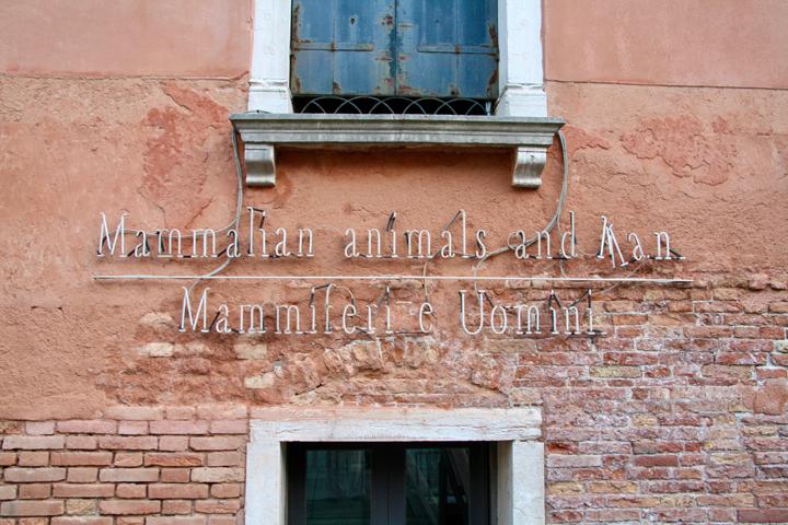 Venice, Palazzo Querini Stampalia, Joseph Kosuth