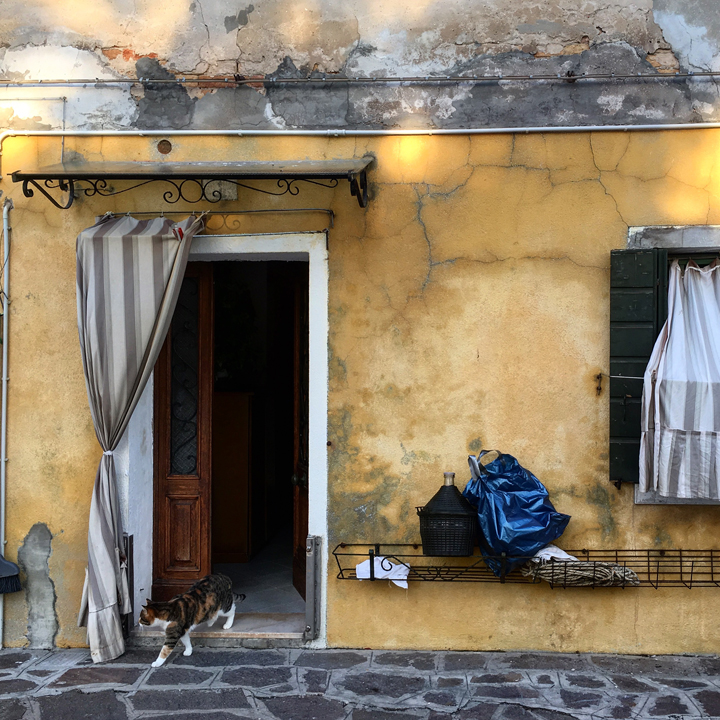 A house in Burano with a cat